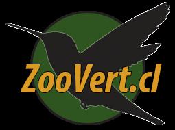 Laboratorio de Zoología de Vertebrados